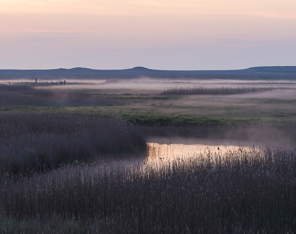 A misty morning at the marshes at Cley next the Sea, Norfolk, England, United Kingdom, Europe