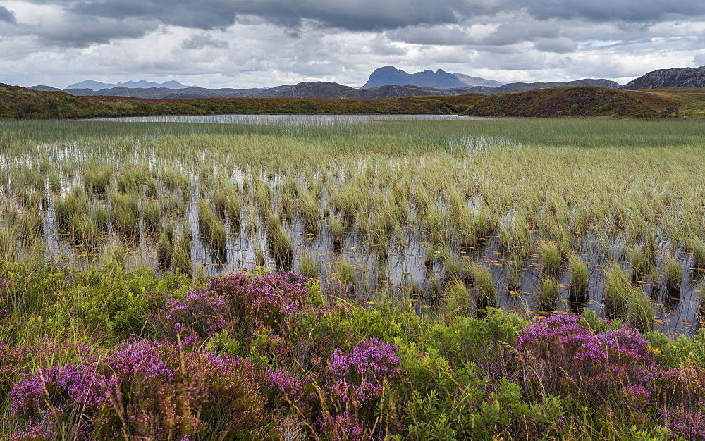 Suilven looms in the distance in this view across Loch Garvie near Achnahaird, Ross and Cromarty, Highlands, Scotland, United Kingdom, Europe - 842-544