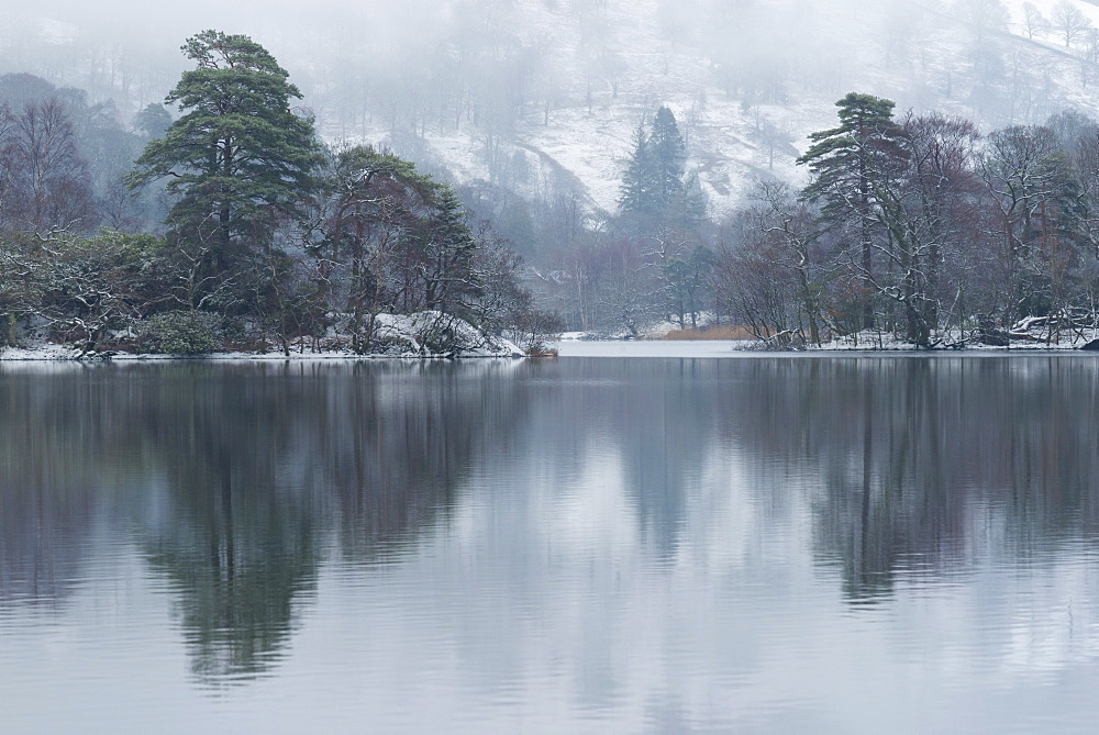 A winter scene at Rydal Water, Lake District National Park, Cumbria, England, United Kingdom, Europe - 842-562