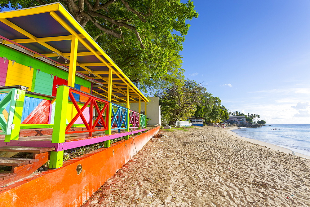 Colourful Beach Hut, Speightstown, St. Peter, Barbados, West Indies, Caribbean, Central America - 844-10407