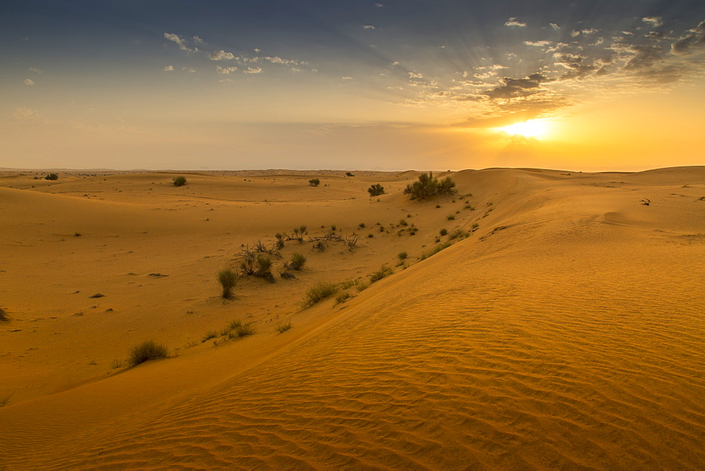Sunrise over sand dunes in the Dubai Desert, Dubai, United Arab Emirates, Middle East
