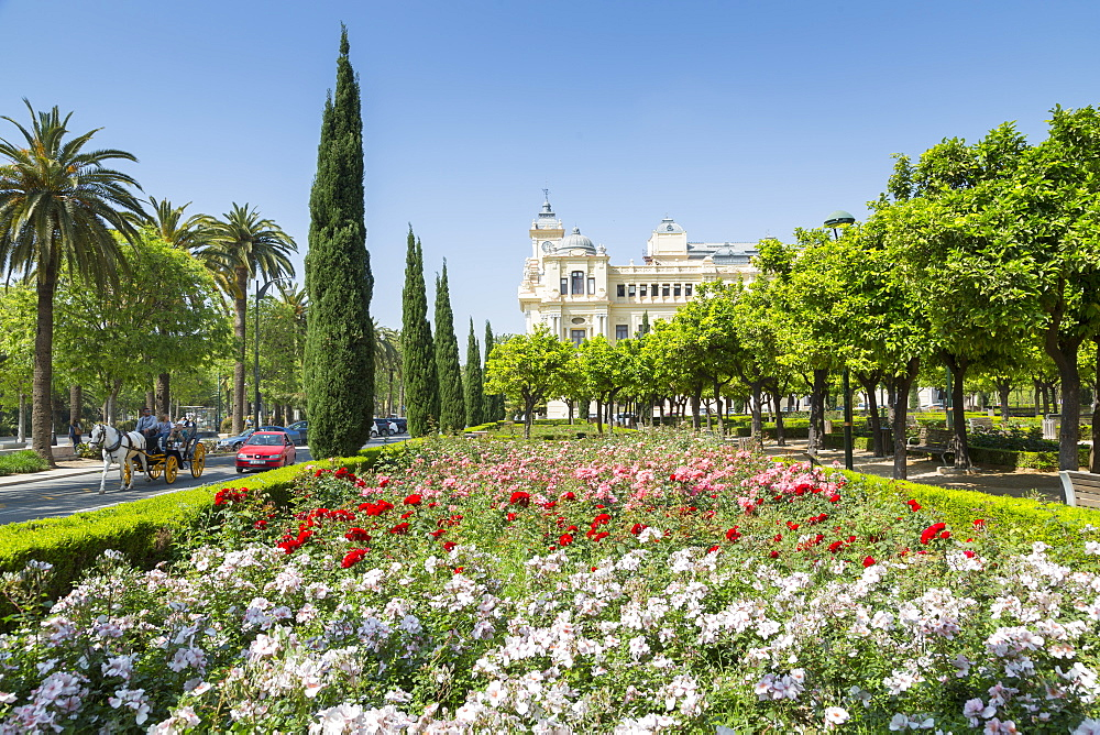 View of Jardines de Pedro Luis Alonso and Town Hall Palace (Ayuntamiento), Malaga, Costa del Sol, Andalusia, Spain, Europe