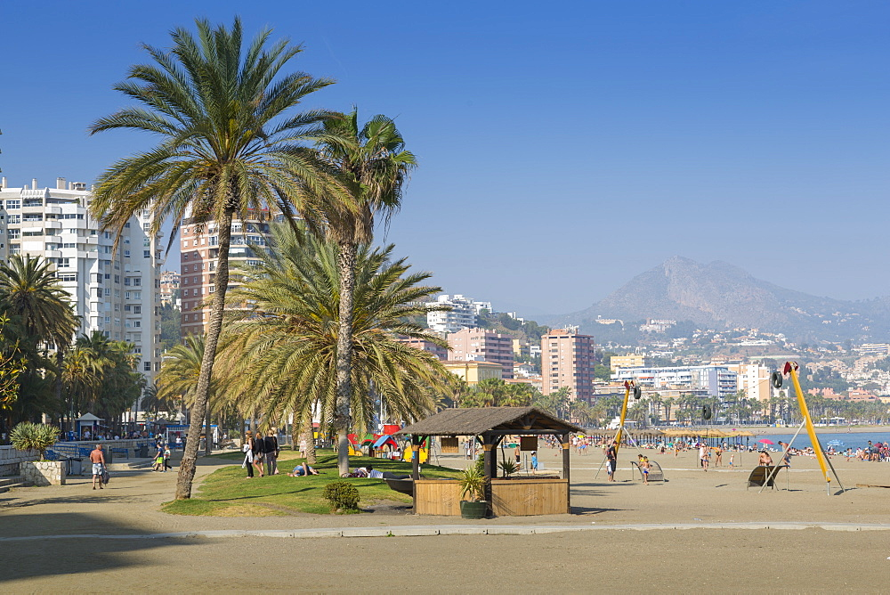 Popular urban beach of Playa la Malagueta, Malaga, Costa del Sol, Andalusia, Spain, Europe