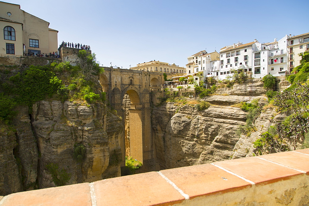View of Ronda and Puente Nuevo from Jardines De Cuenca, Ronda, Andalusia, Spain, Europe