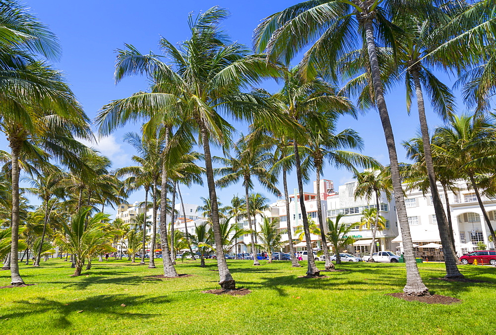 Ocean Drive and Art Deco architecture looking through palm trees, Miami Beach, Miami, Florida, United States of America, North America