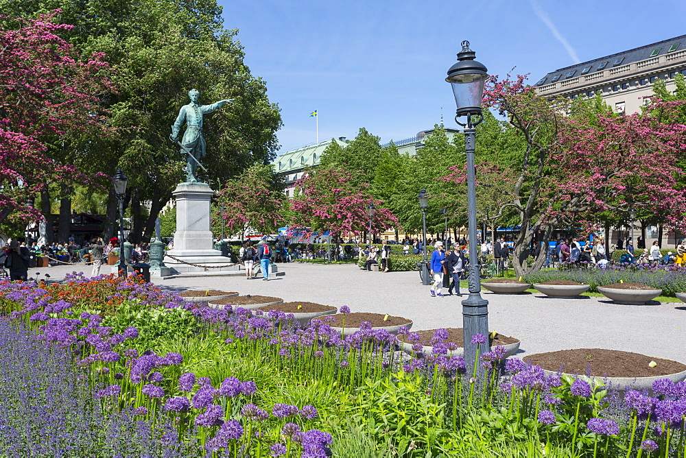 View of flowers and statue in Kungsträdgården, Stockholm, Sweden, Scandinavia, Europe