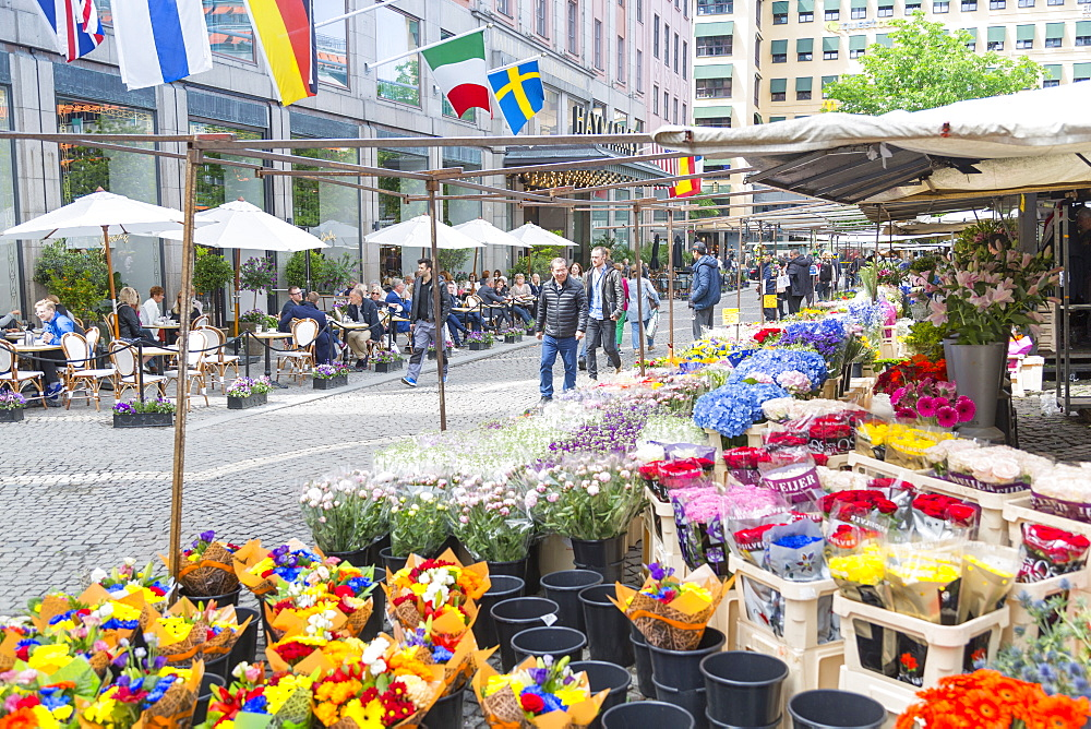 Flower stall and cafe in Hotorget, Stockholm, Sweden, Scandinavia, Europe