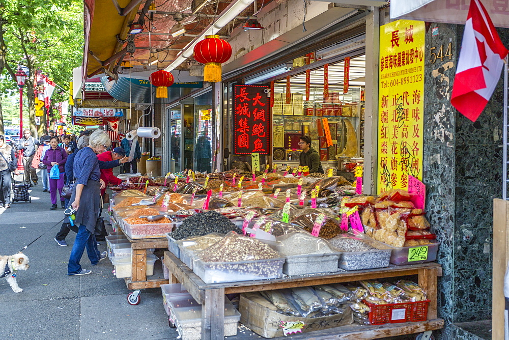 Colourful produce store and shoppers in Chinatown, Vancouver, British Columbia, Canada, North America - 844-14437