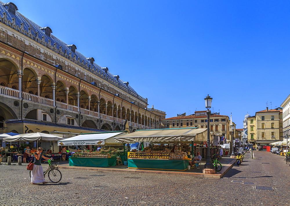 Medieval fresco-filled civic building Ragione Palace and market in Piazza della Frutta, Padua, Veneto, Italy, Europe