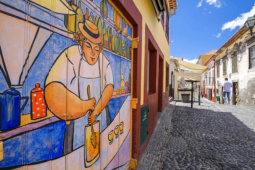 View of bacstreet and beautifully pained door, Funchal, Madeira, Portugal, Europe - 844-16285