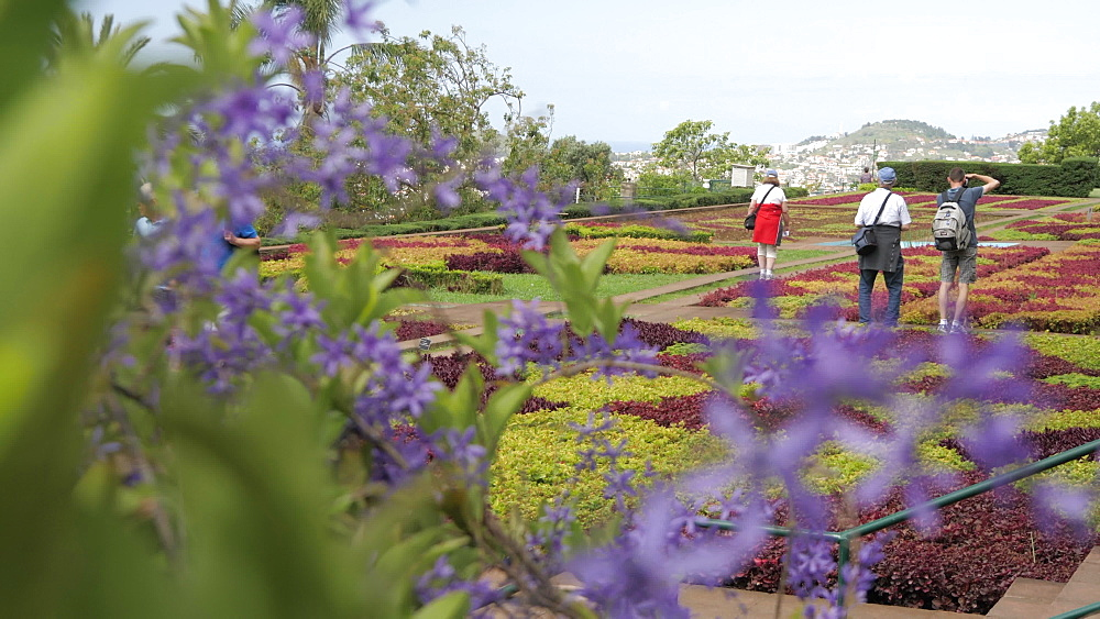 Slider shot of visitors in Botanical Gardens, Funchal, Madeira, Portugal, Atlantic, Europe