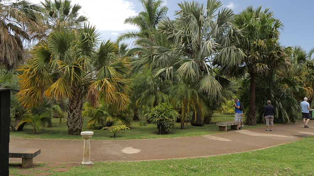 View of visitors in Botanical Gardens, Funchal, Madeira, Portugal, Atlantic, Europe