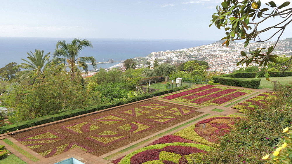 Botanical Gardens with Old Town visible in background, Funchal, Madeira, Portugal, Atlantic, Europe