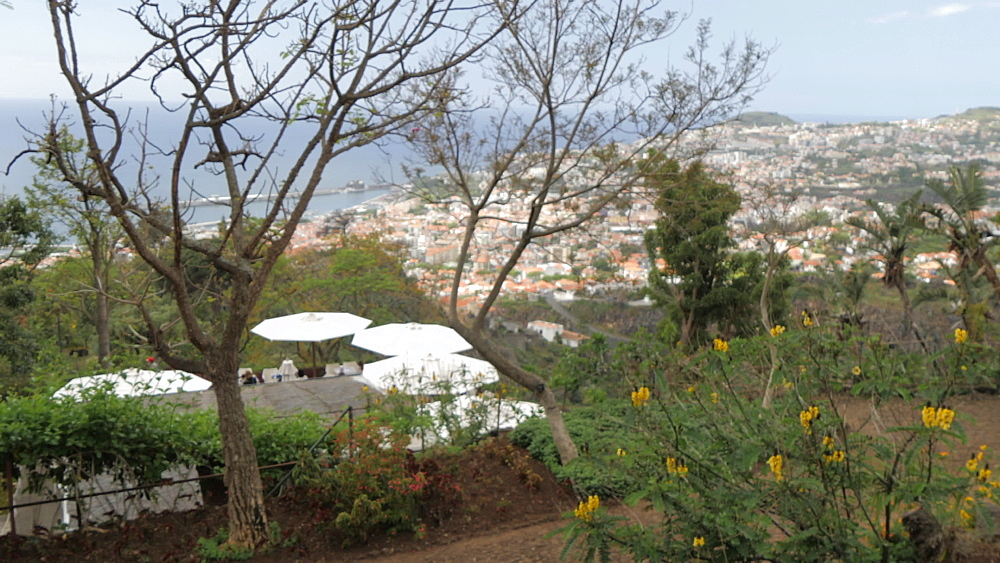 Botanical Gardens Cafe with Old Town visible in background, Funchal, Madeira, Portugal, Atlantic, Europe