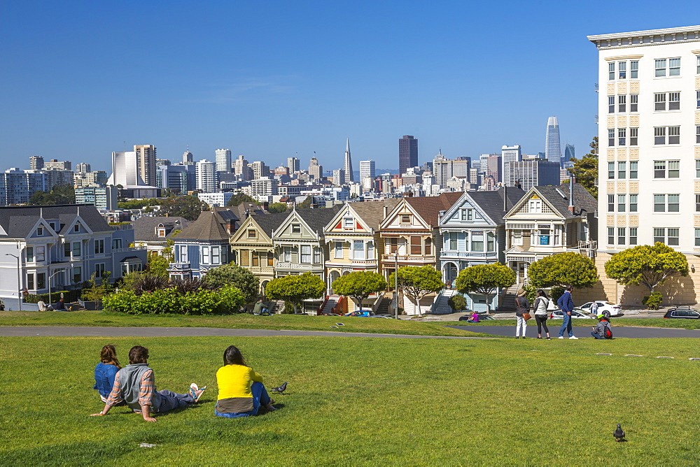 View of Painted Ladies, Victorian wooden houses, Alamo Square, San Francisco, California, USA, North America - 844-16965