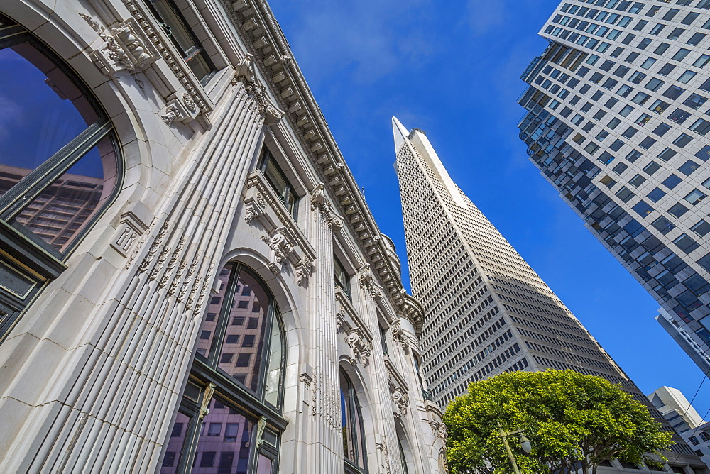 View of Transamerica Pyramid building in the financial district of Downtown, San Francisco, California, United States of America, North America