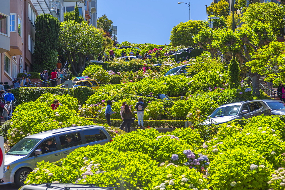 View of cars on Lombard Street, San Francisco, California, United States of America, North America