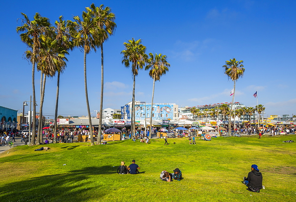 View of palm trees and visitors on Ocean Front Walk in Venice Beach, Los Angeles, California, United States of America, North America
