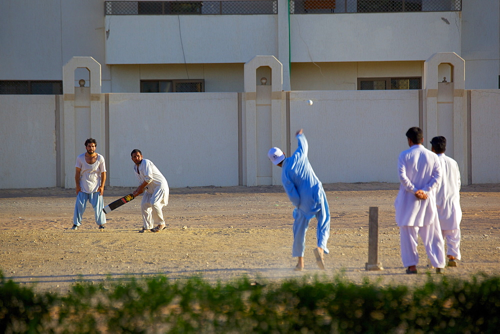 Local cricket match, Al Ain, Abu Dhabi, United Arab Emirates, Middle East