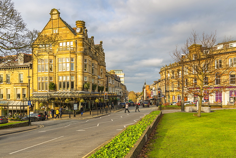 View of Parliament Street at Christmas, Harrogate, North Yorkshire, England, United Kingdom, Europe