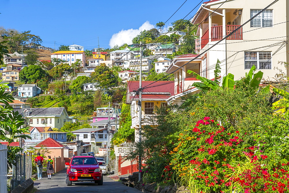 View of colourful houses that overlook the Carenage of St. George's, Grenada, Windward Islands, West Indies, Caribbean, Central America