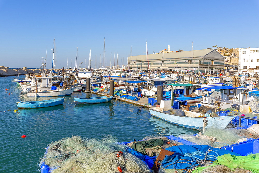 View of boats in the harbour, Jaffa Old Town, Tel Aviv, Israel, Middle East