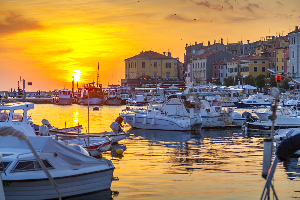 View of harbour and the old town at sunset, Rovinj, Istria, Croatia, Adriatic, Europe