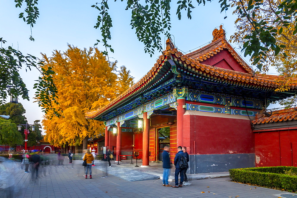 View of autumn colours and souvenir shop in Jingshan Park at dusk, Xicheng, Beijing, People's Republic of China, Asia - 844-21848