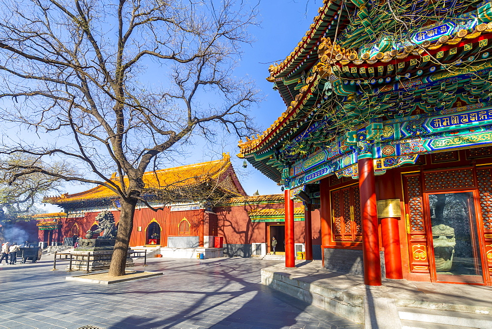 View of Ornate Tibetan Buddhist Lama Temple (Yonghe Temple), Dongcheng, Beijing, People's Republic of China, Asia - 844-21858