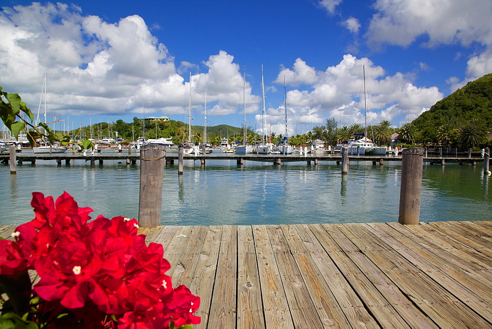 Jolly Harbour, St. Mary, Antigua, Leeward Islands, West Indies, Caribbean, Central America