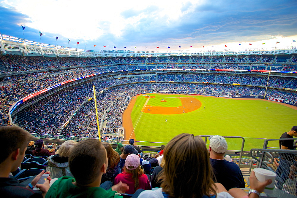 Baseball in the Yankee Stadium, The Bronx, New York, United States of America, North America