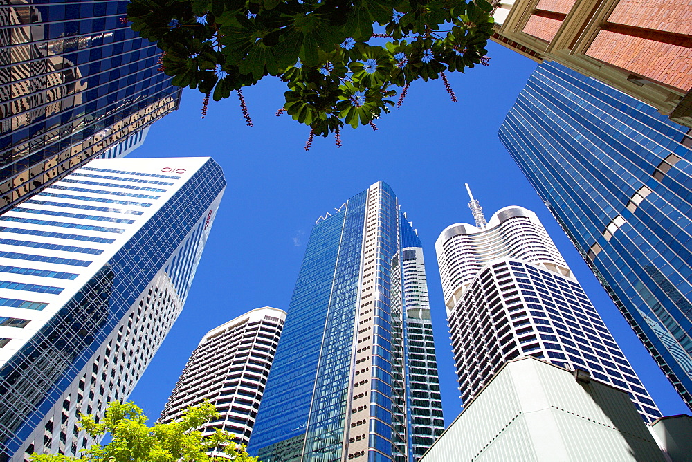 City Skyscrapers, Brisbane, Queensland, Australia, Oceania