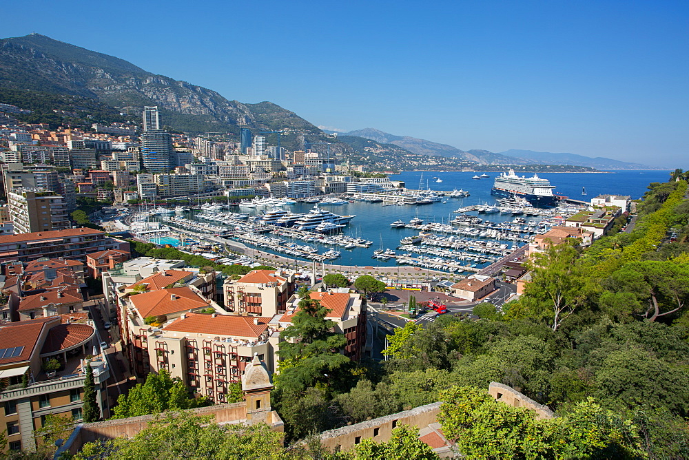 View of Harbour, Monaco, Mediterranean, Europe