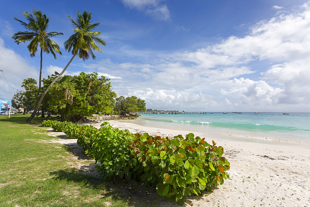 Welches Beach, Oistins, Christ Church, Barbados, West Indies, Caribbean, Central America