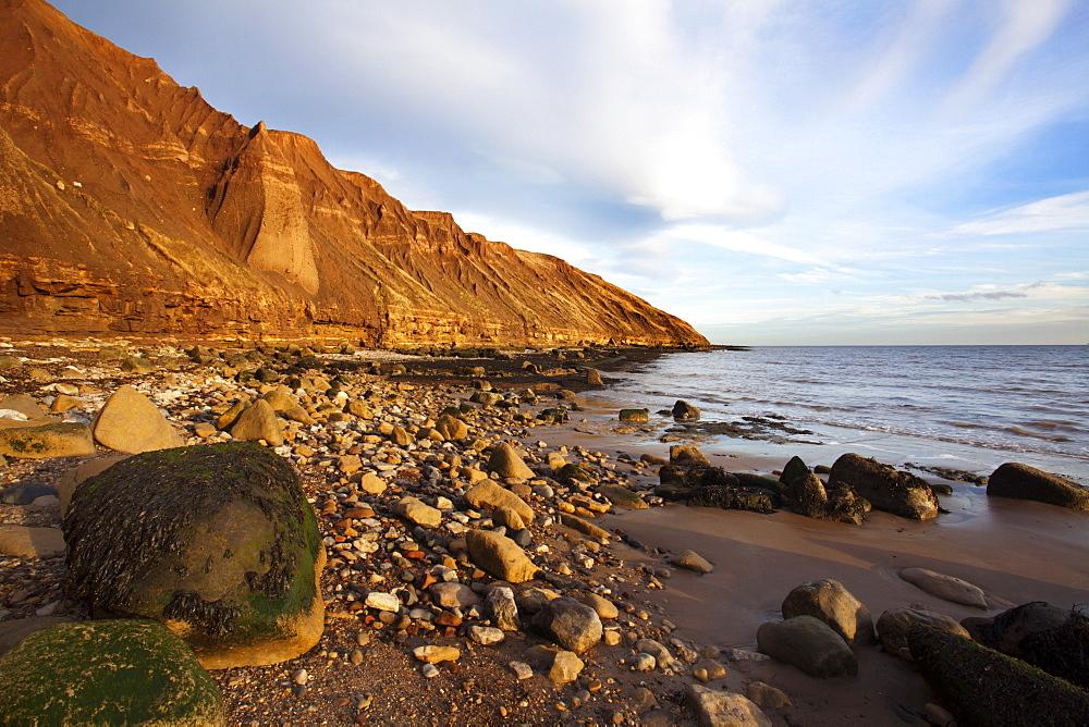Rocky shoreline below Carr Naze, Filey Brigg, Filey, North Yorkshire, Yorkshire, England, United Kingdom, Europe