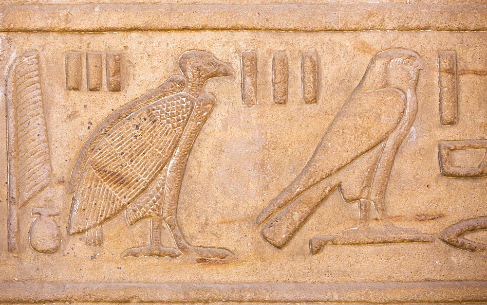 Vulture and falcon relief on the walls of the Great Courtyard at the Temple of Horus, Edfu, Egypt, North Africa, Africa