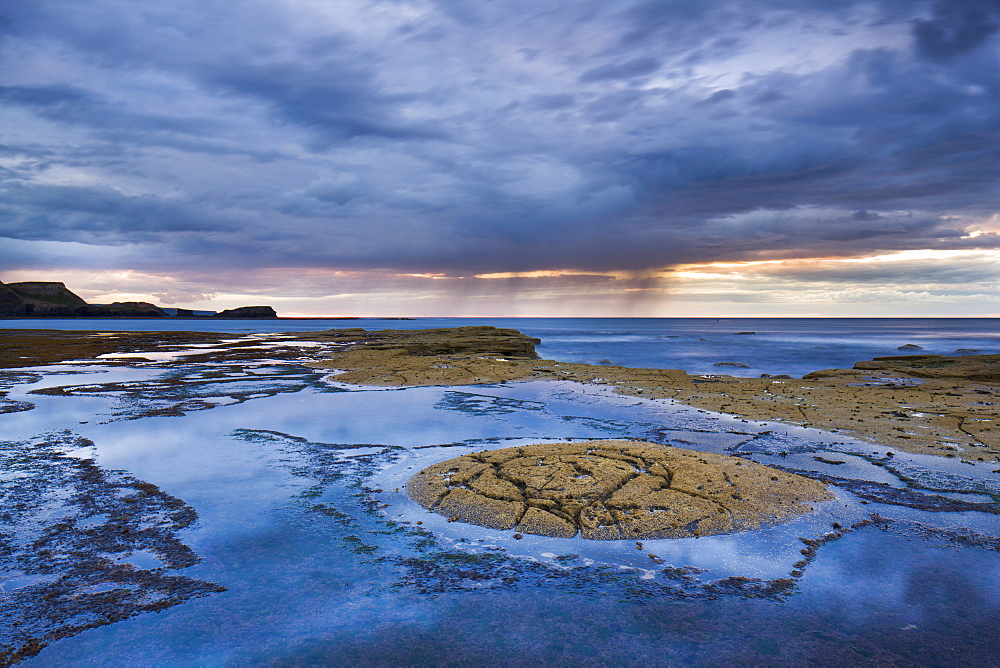 Ancient rock formations on the shale sea bed at Saltwick Bay, North Yorkshire, Yorkshire, England, United Kingdom, Europe