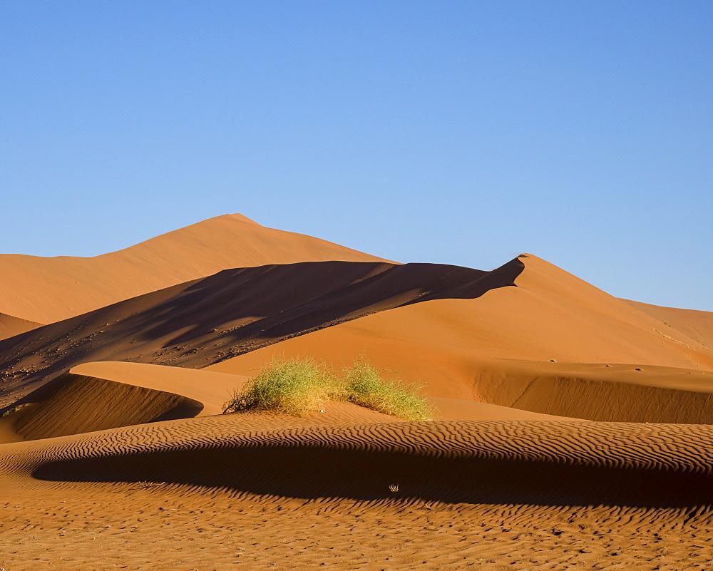 Looking towards Big Daddy and Mummy dunes at Deadvlei, Namib Naukluft, Namibia, Africa