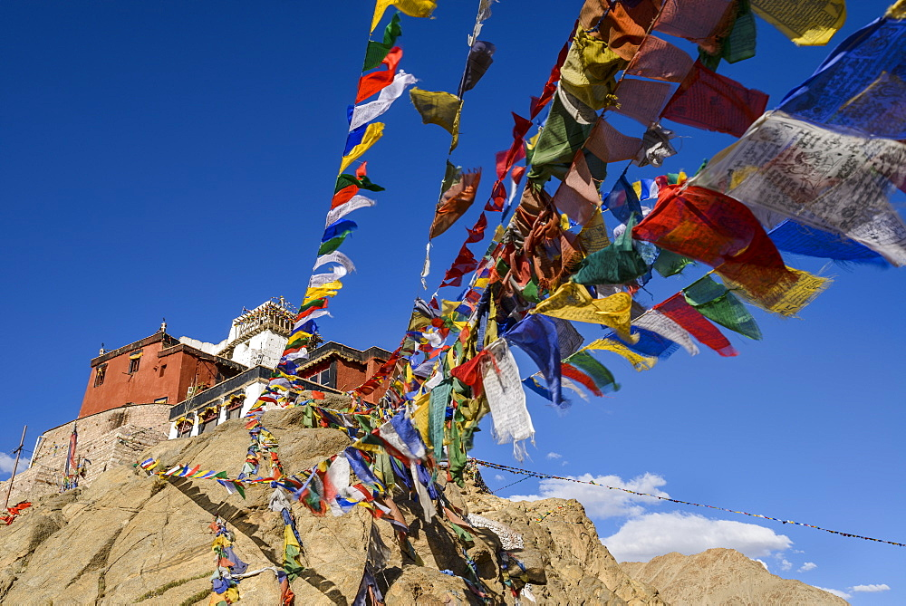 Prayer flags at Namgyal Tsemo Monastery in Leh, Ladakh, Himalayas, India, Asia - 847-460