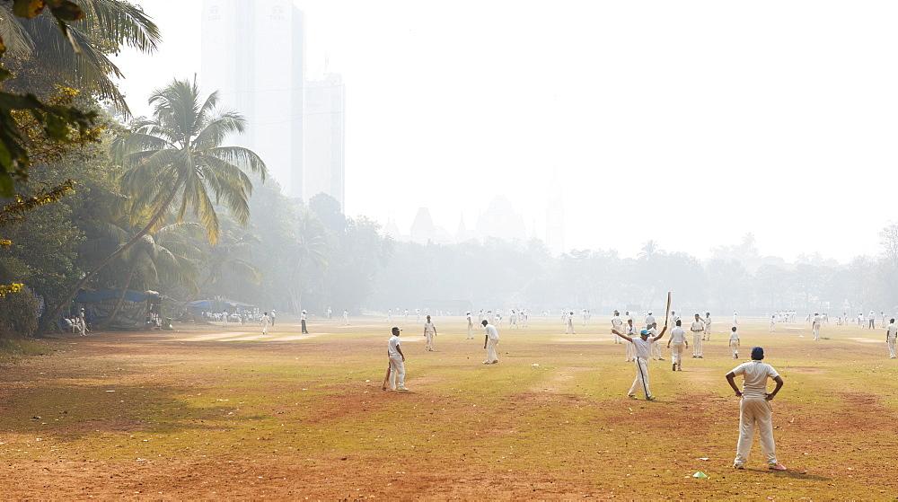 Cricket at Oval Maidan, Mumbai (Bombay), India, South Asia