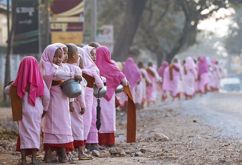 Buddhist nuns collecting alms in the early morning near Hsipaw, Shan State, Myanmar, Asia