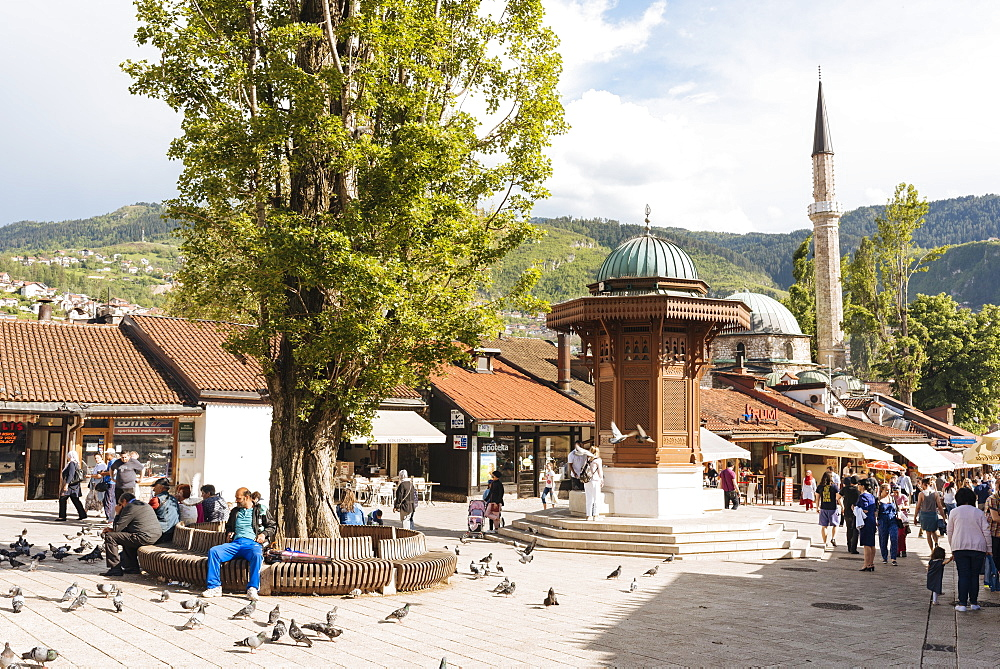 Pigeon Square, Old Town, Sarajevo, Bosnia and Hercegovina, Europe - 848-1356