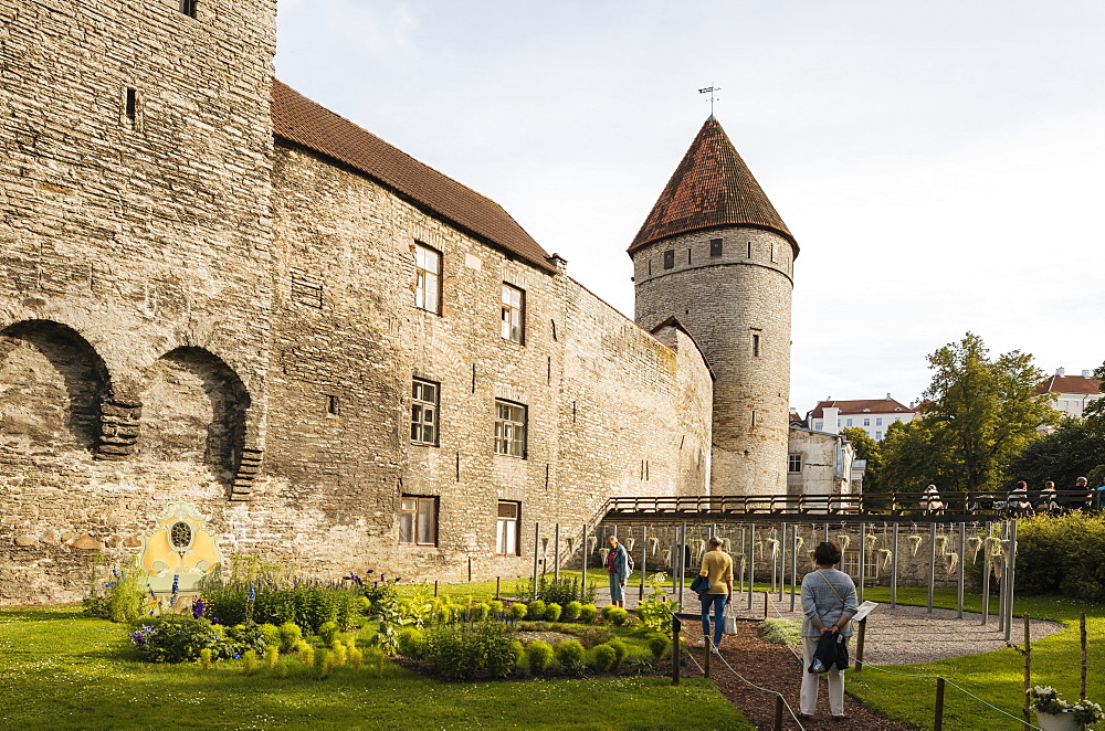 The Old City walls, Old Town, Tallinn, Estonia, Europe - 848-1408