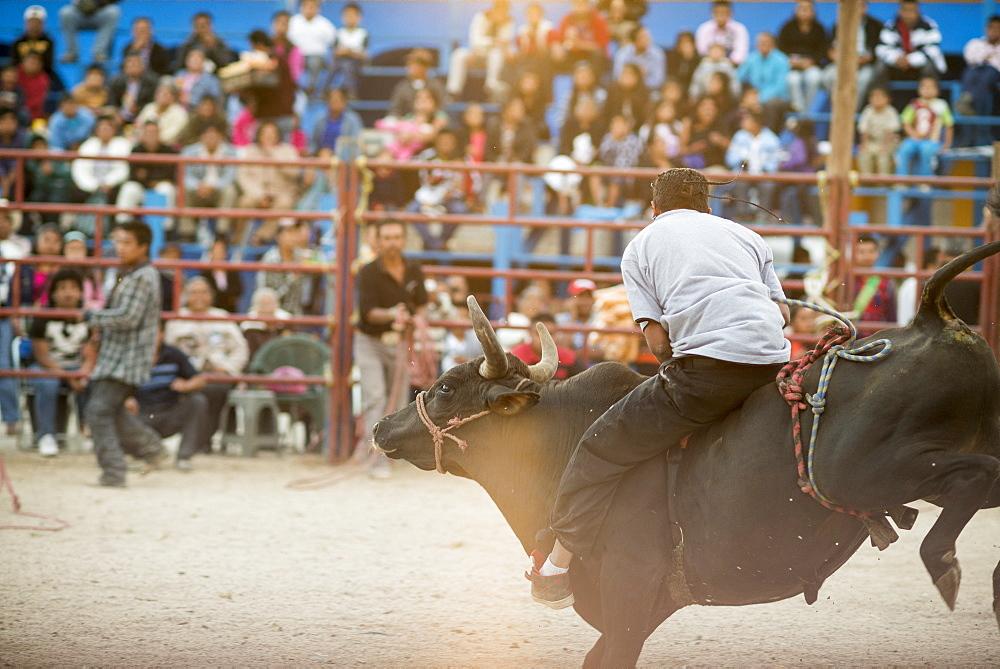 Rodeo at Santa Cruz Papalutla, Oaxaca, Mexico, North America