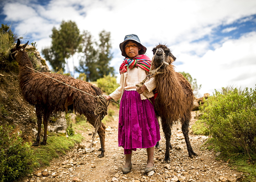Portrait of Mariel with her two Llamas, Isla del Sol, Lake Titicaca, Bolivia, South America