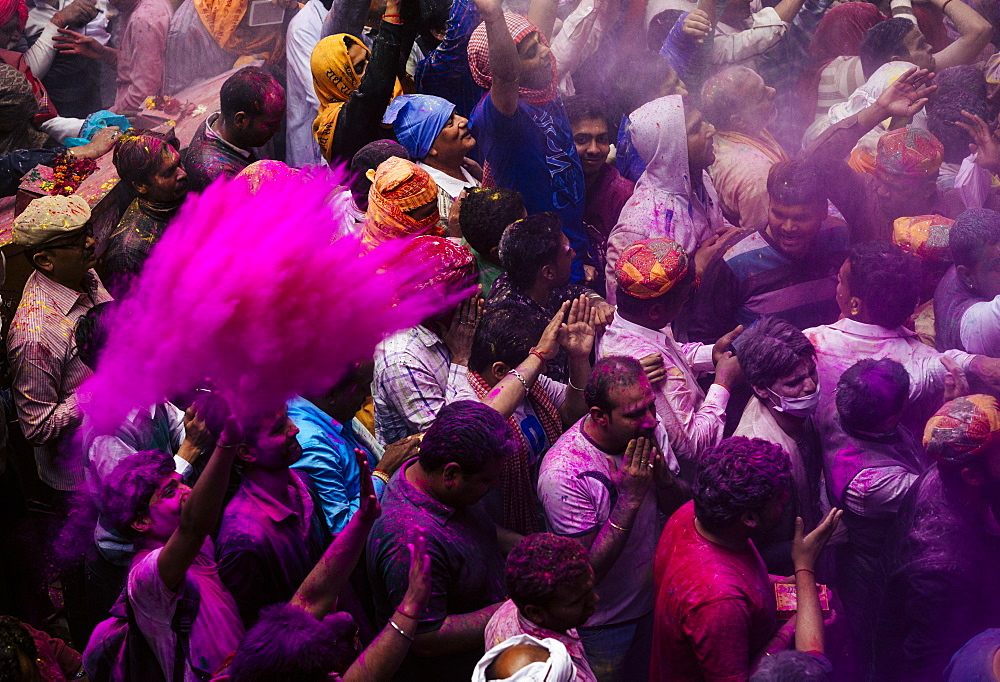 Lathmar Holi celebrations in Bankei Bihari Temple, Vrindavan, Braj, Uttar Pradesh, India, Asia