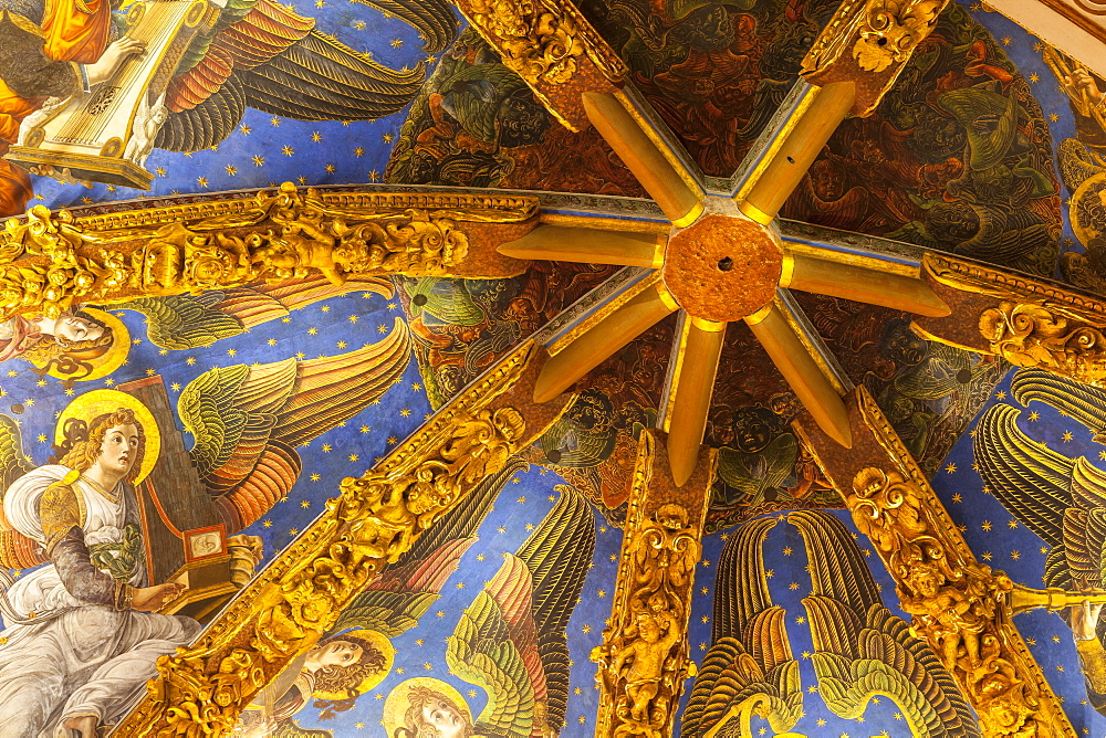 Decorated ceiling in the Metropolitan Cathedral-Basilica of the Assumption of Our Lady of Valencia (Iglesia Catedral-Basilica Metropolitana de la Asuncion de Nuestra Senora de Valencia), Valencia, Spain, Europe