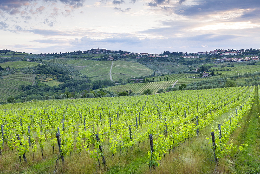 The town of Panzano in Chianti, part of the famous Chianti wine region in Tuscany, Italy, Europe