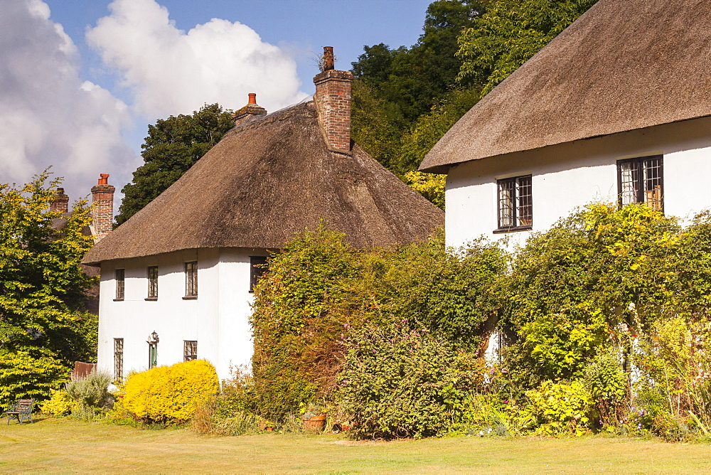 Thatched cottages in Milton Abbas, Dorset, England, United Kingdom, Europe