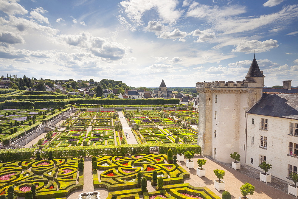 The maze-like gardens at the Chateau of Villandry, UNESCO World Heritage Site, Loire Valley, Indre et Loire, Centre, France, Europe